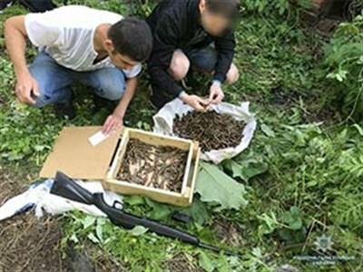 В Славянске в погребе нежилого дома нашли 1,5 тысячи патронов и карабин из Донецка
