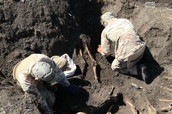 В селе возле Славянска на огороде найдены останки шестерых воинов ВОВ