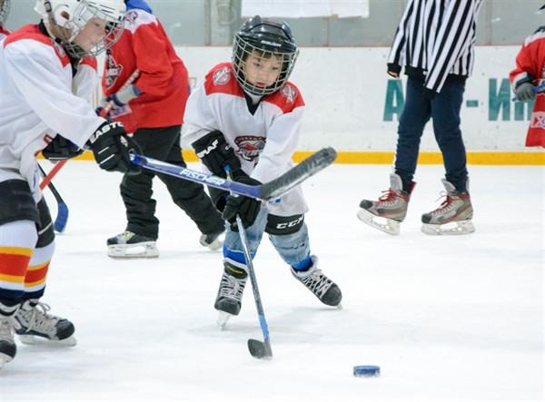 Хоккейная команда из Славянска взяла серебро на детском турнире «Золотая шайба Донбасса»