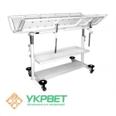 Оборудование для ветклиник: лучшее качество и цены