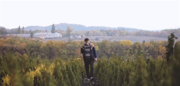 «Великі історії малого бізнесу»: 2 місце на конкурсі – у відеоролика про історію успіху Іллі Лазаренка, власника студії ландшафтного дизайну у Слов'янську
