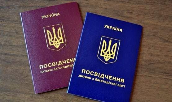 Многодетные семьи Славянска смогут получать удостоверения в Управлении соцзащиты