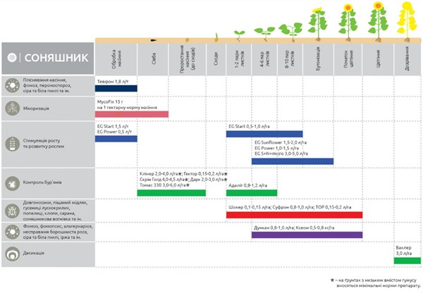 Мероприятия, направленные на защиту посевов подсолнуха