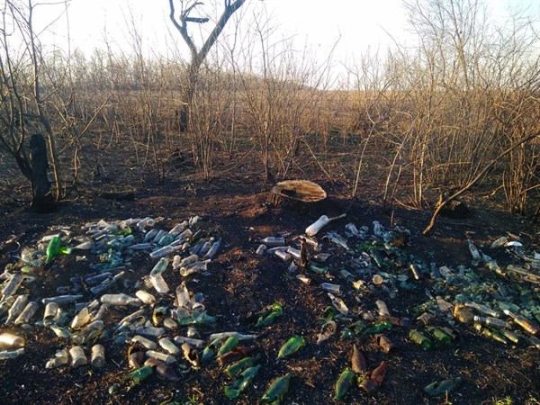 Тонны мусора и сотни спиленных деревьев: что происходит за пределами поселка Былбасовка