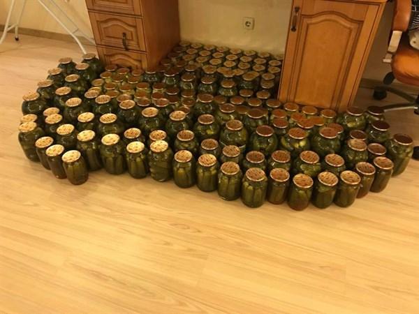 Неля Штепа похвалилась своими заготовками на зиму: попробуйте сосчитать, сколько на фото банок с огурцами