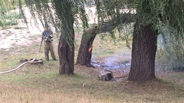 В Славянске подпалили иву на набережной