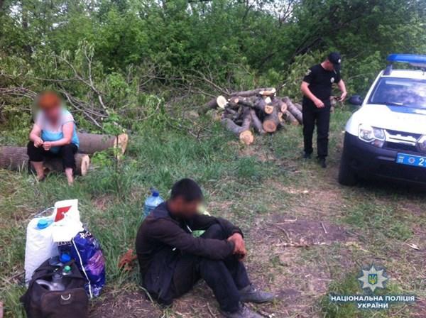 Мешканці Краматорська затримані зі свіжеспиленими деревами у Слов'янському районі