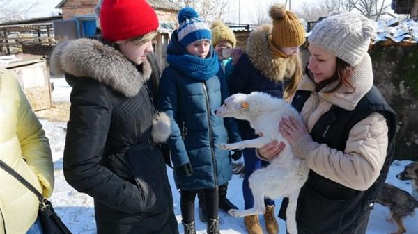 Вихованці Центру дитячої та юнацької творчості підтримали бездомних тварин у Слов'янську