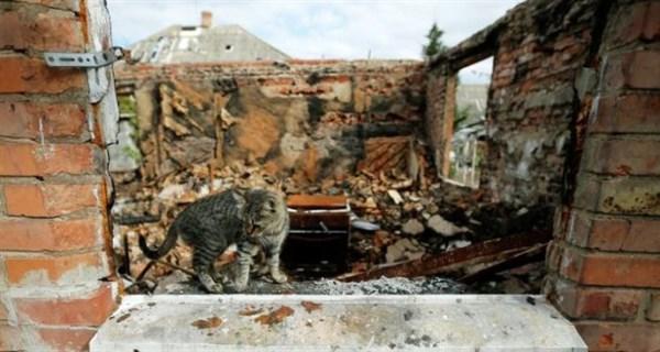 Пенсіонерка зі Словянська, пройшовши 5 судів, домоглася від держави відшкодування за знищене під час АТО житло