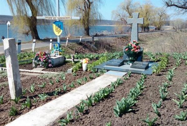 Під Слов'янському біля пам'ятника загиблим українським героям висадили тисячу тюльпанів