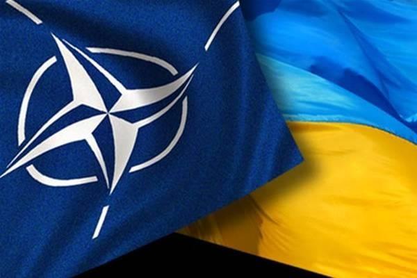 На Донбассе до сих пор верят в мифы о НАТО