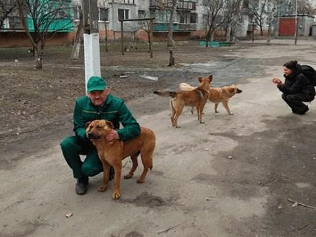 В Славянске стартовала вторая акция по стерилизации бездомных животных