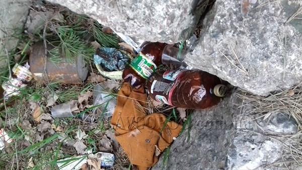 «Подозрение вызвало то, что они запили таблетки пивом»: жители Святогорска обеспокоены поведением посетителей центра реабилитации наркозависимых