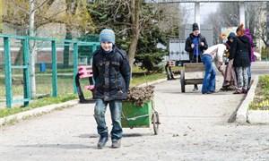 """Генеральная уборка в парке """"Шелковичный"""": как все происходило"""