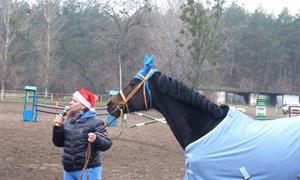 Новогоднее приключение в славянском конном клубе «Аллюр» с самым спортивным Дедом Морозом